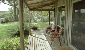 Dog friendly Otways Accommodation - Great Ocean Road, Victoria