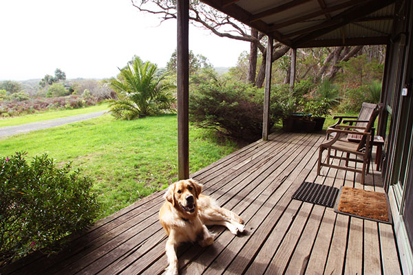 Pet Friendly Accommodation - Cape Otway - Victoria